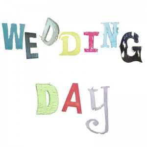 Wedding Day Card by The Steel Rooms
