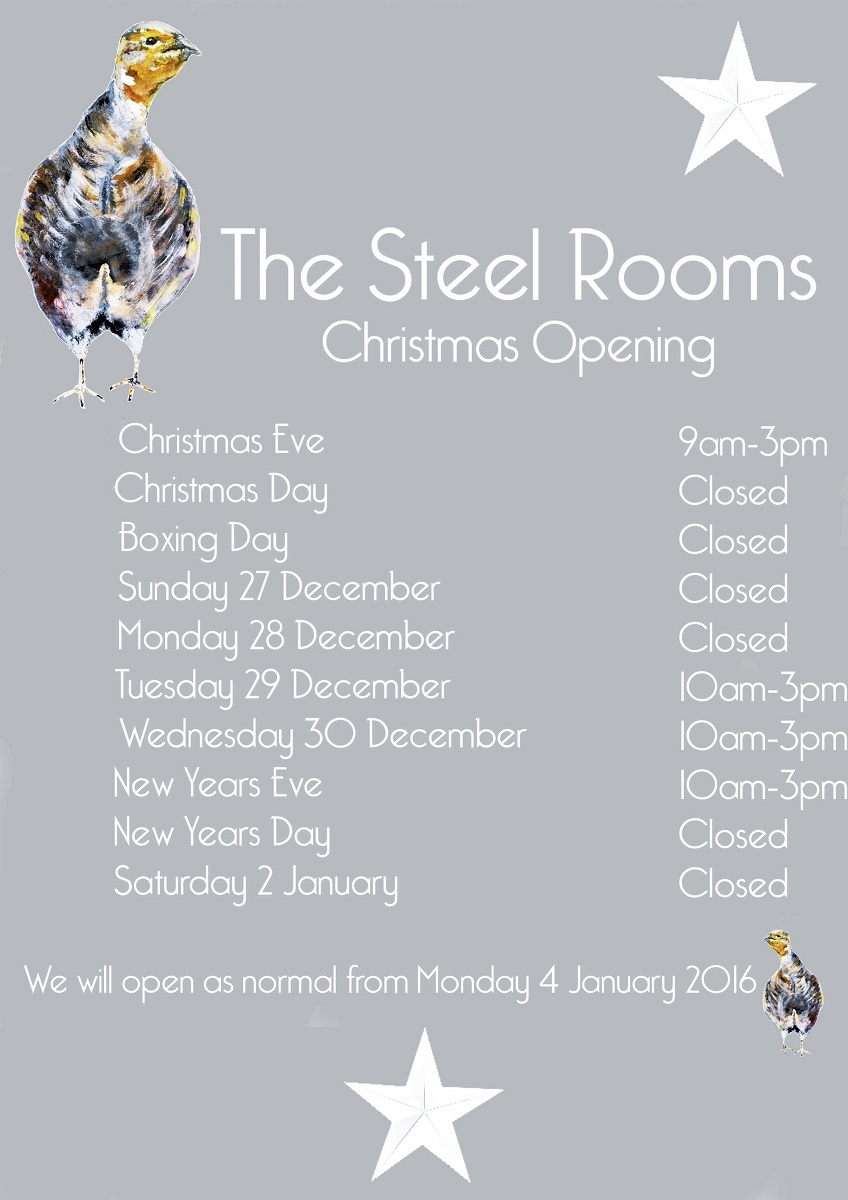 The Steel Rooms Christmas Opening 2015