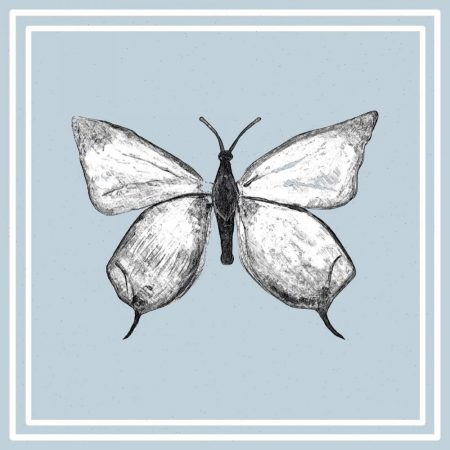 The Steel Rooms Butterfly Card