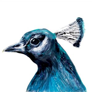 Peacock Head Card by Julie Steel for The Steel Rooms